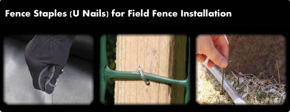 Fence Staples U Nail For Wire Mesh Fencing Fabrics Fixing