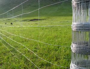 High Tensile Steel Wire Fences for Deer and Cattle Farming