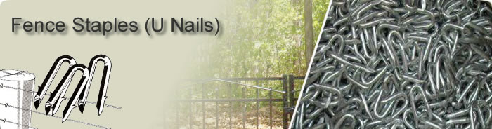 Stainless Steel U Garden Fence Staples Nails